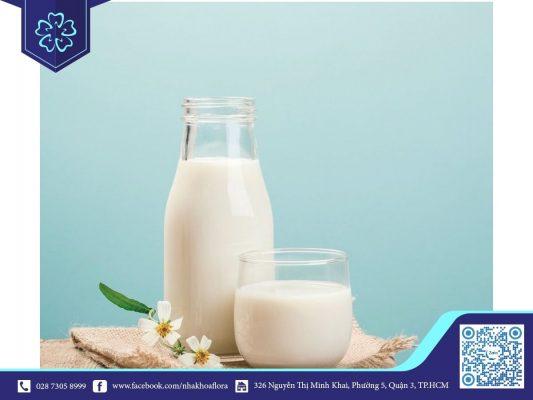 hình sữa